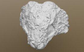 В СПбГУ отреставрировали столетние слепки черепов ящеров и сделали их 3D-модели