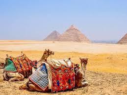 СМИ: эксперты могут дать положительное заключение по безопасности в аэропортах Египта