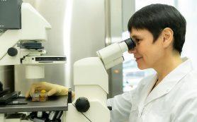Ученые смоделировали хромосомную нестабильность
