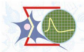 Физики МГУ создали новую модель для ускоренной разработки лекарств