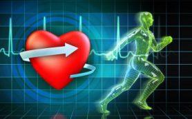 Физическая активность поможет избежать сердечных приступов и инсультов