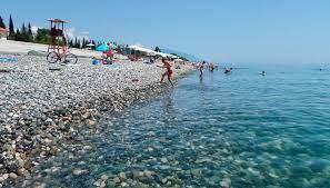 Пляжи Сочи возьмут под особый контроль