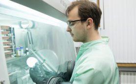 Ученые создали электроды для компактного и безопасного литий-ионного аккумулятора