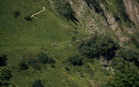 На Курорте Красная Поляна открылась «Черничная тропа» протяжённостью более 19 км!