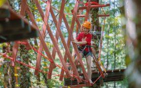 На Курорте Красная Поляна появился новый верёвочный парк с аттракционами