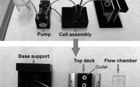 Новое микроустройство поможет выявлять риски тромбоза в реальном времени