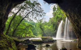Грот с водопадом откроется в «Аптекарском огороде»
